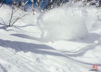 Experience Japow Ski-Snowboard-121