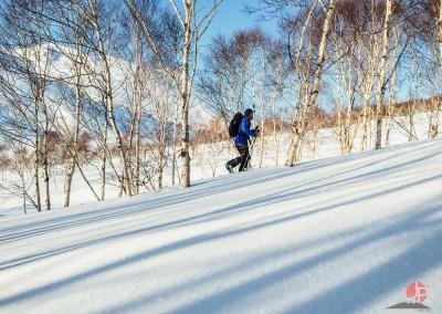 Experience Japow Ski-Snowboard-130