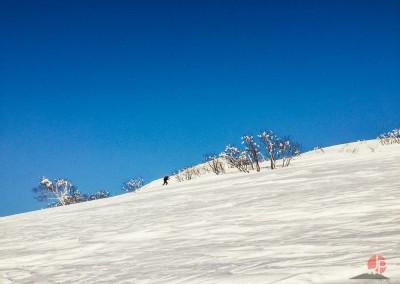 Experience Japow Ski-Snowboard-131