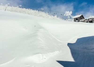 Experience Japow Ski-Snowboard-135